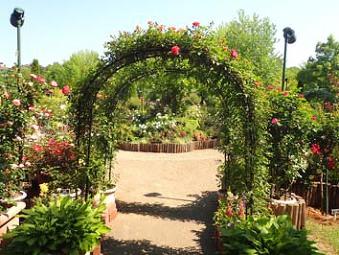 2018年 花・花プラン『日本庭園 由志園』&『とっとり花回廊』